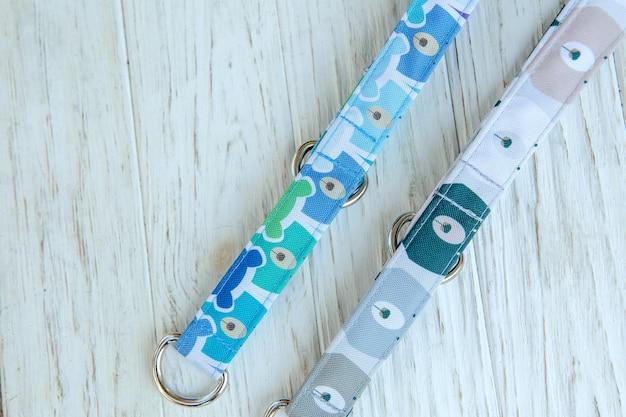犬の首輪と鎖のセットペット用品とウォーキングギアコレクション