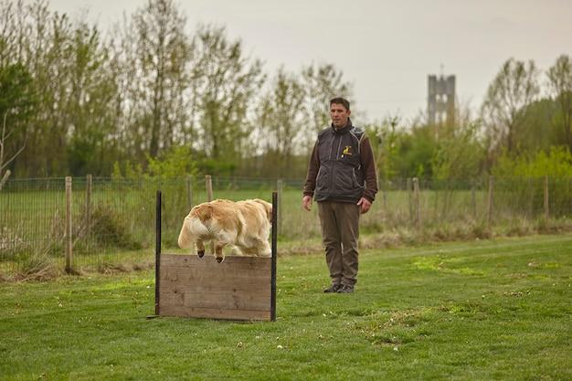 Соревнования собак с инструктором, который заставляет собаку прыгать