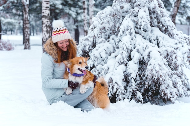 Dog corgi fluffy and his owner playing on a winter walk at the outdoor