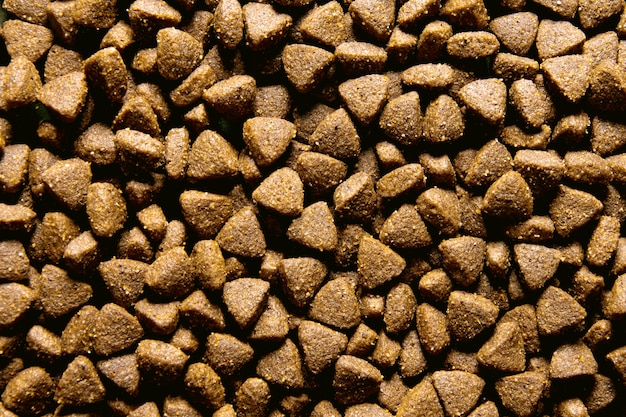 Dog food close-up