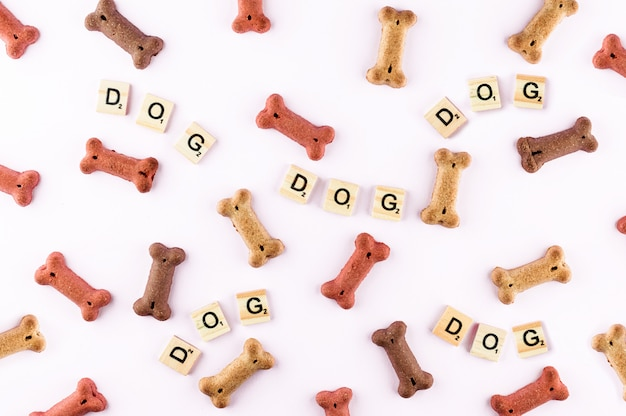 Dog food pattern made with dry snacks in shape of bones. word dog in wooden tiles. funny flat lay texture.