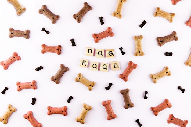 Dog food pattern made with dry snacks in shape of bones. word dog in wooden tiles.