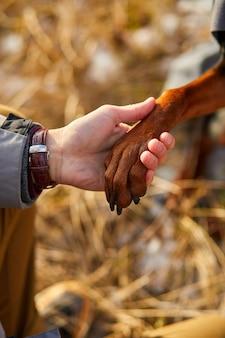 犬は人間の足、人間と犬の間の友情を与えます。
