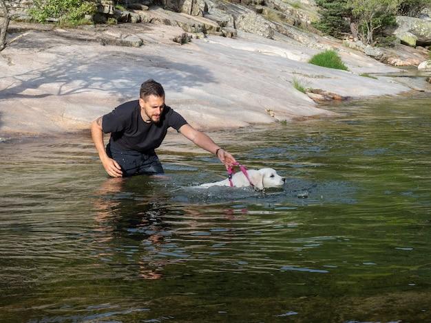 ひもでつないでいる犬のハンドラーは、子犬にラグーンで泳ぐように教えています。湖で泳ぐことを学ぶ白い子犬。