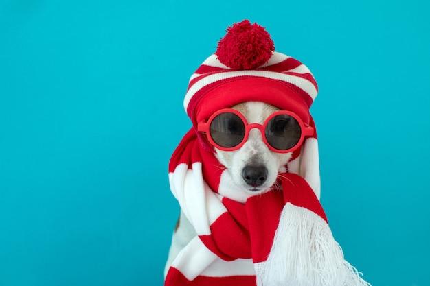 모자와 스카프에 개