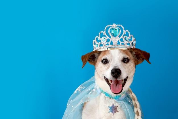 淡いチュールを身に着けて宝石をちりばめた三つ編みとマントのポーチを持つ王女の衣装を着た犬