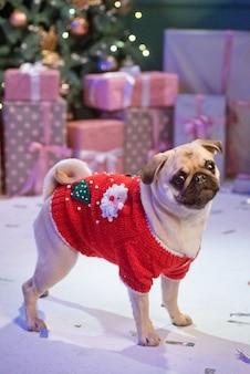 산타 의상 개는 스튜디오에서 선물 크리스마스 트리 아래에 앉아있다