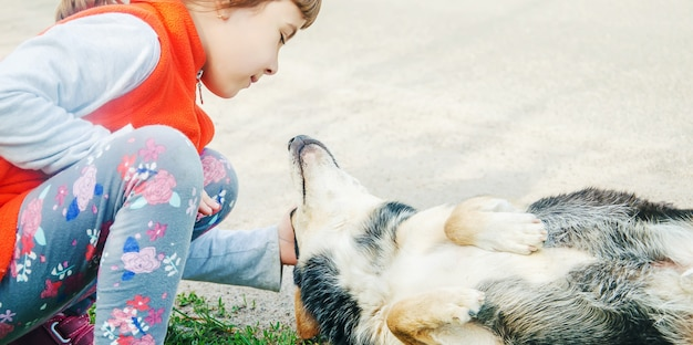The dog is the friend of man. gives a paw to the child.