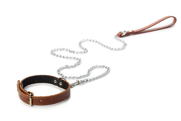 Dog leash isolated on white. close up