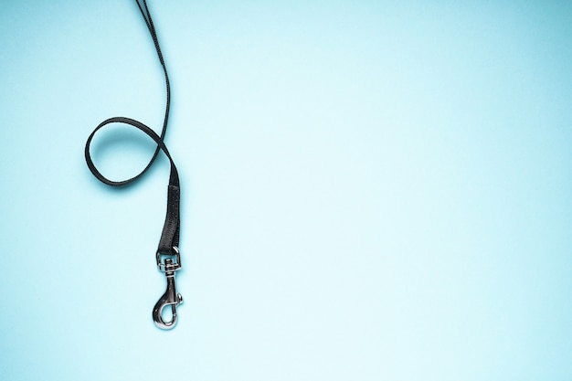 Dog leash with carabiner on a blue background, space for text, top view.