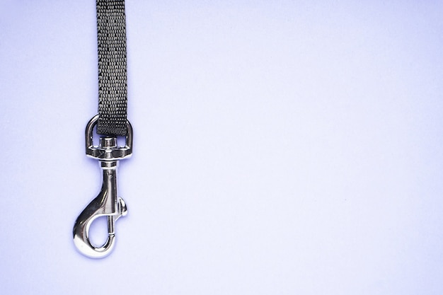 Dog leash with carabiner on a purple background, space for text, flat lay.