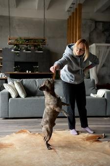 犬のライフスタイルと飼い主とのケア