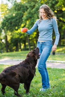 Dog looking at woman holding red ball in park