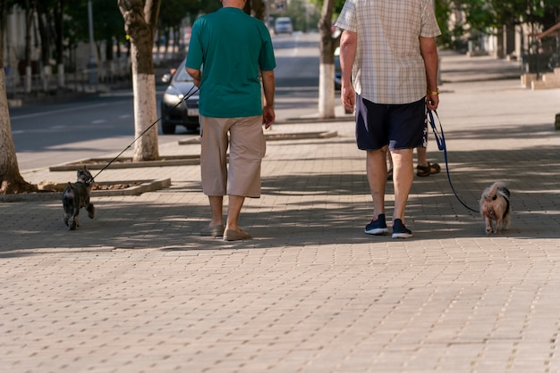 A dog owner walking with a dog in the city street in the morning