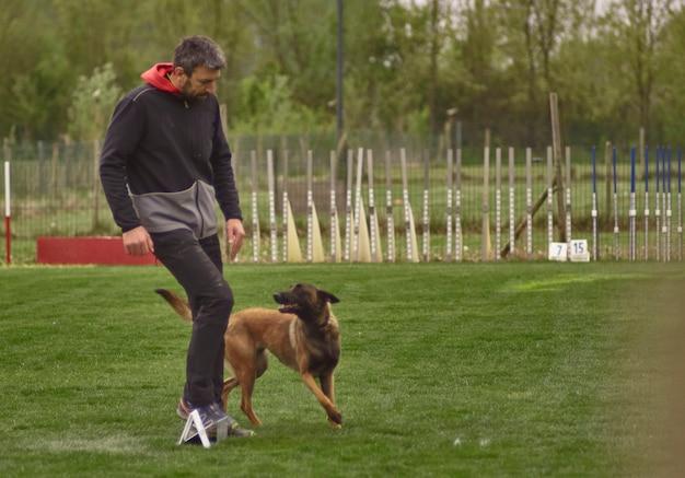 Собачьи бега с инструкциями хозяина собаке.