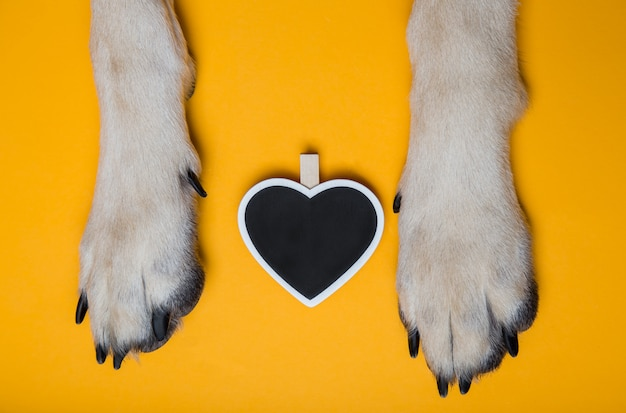 Dog's paws on the floor next to the chalk board in the shape of
