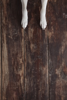 Dog's paws on old vintage brushed wooden table, top view.