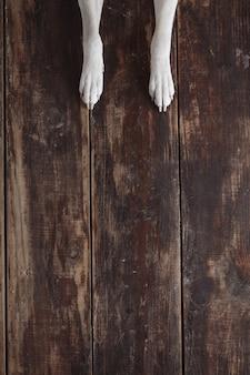 Zampe del cane sul vecchio tavolo in legno spazzolato vintage, vista dall'alto.