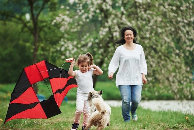 Dog scares kid. positive female child and grandmother running with red and black colored kite in hands outdoors