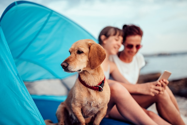 Dog sitting inside beach tent with two people by the sea