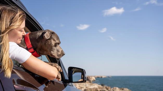 コピースペースで旅行中に飼い主の膝の上に座っている犬