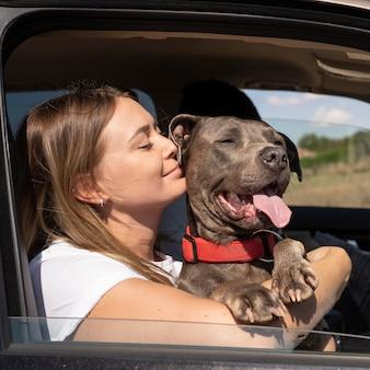 旅行中に飼い主の膝の上に座っている犬