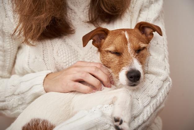 개는 여자 손에 잔 다. 애완 동물 관리 개념
