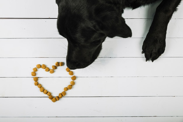 Dog sniffing food heart