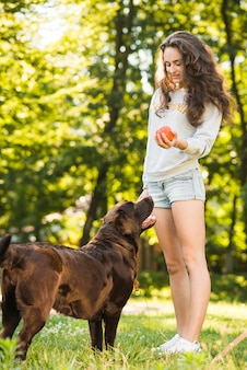 Dog standing near woman holding ball in park