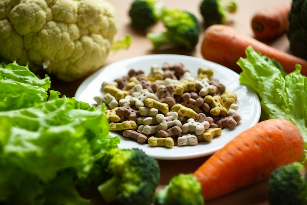 Dog vegetarian dry crunchies on plate and fresh vegetables