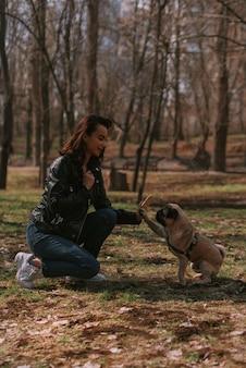 公園を散歩する犬