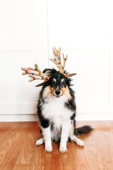 새해와 크리스마스를위한 사슴 뿔이있는 개, 휴가를위한 가정 장식, 강아지