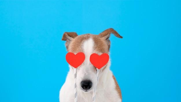 Собака с сердечками вместо глаз