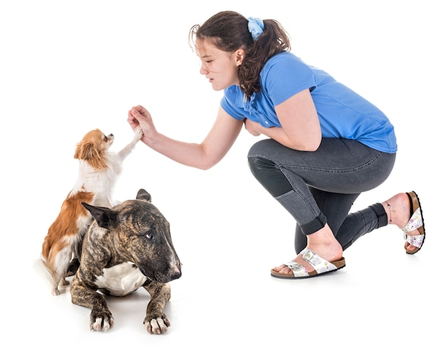 Dogs, owner and obedience