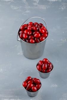石膏のバケツでハナミズキの果実。ハイアングル。