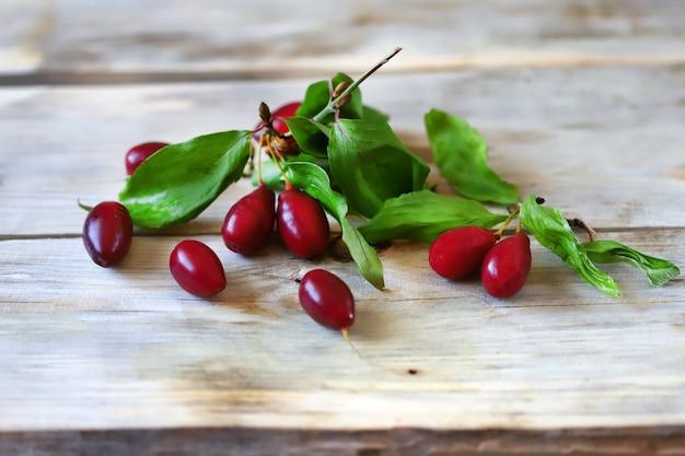 Кизил. свежие ягоды и листья кизила.