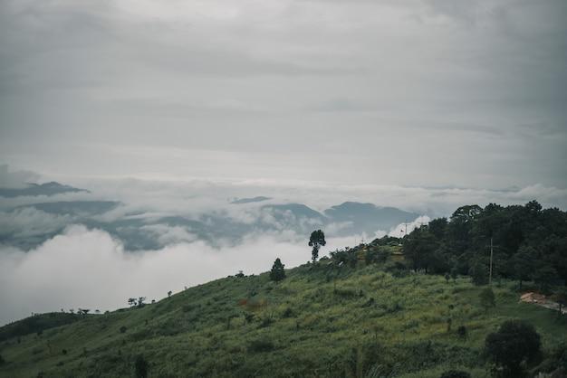 梅雨のドイチャンムプの視点、チェンライ、タイ