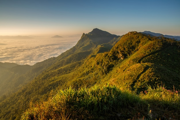 Doi pha tang chiang rai top view in thailand