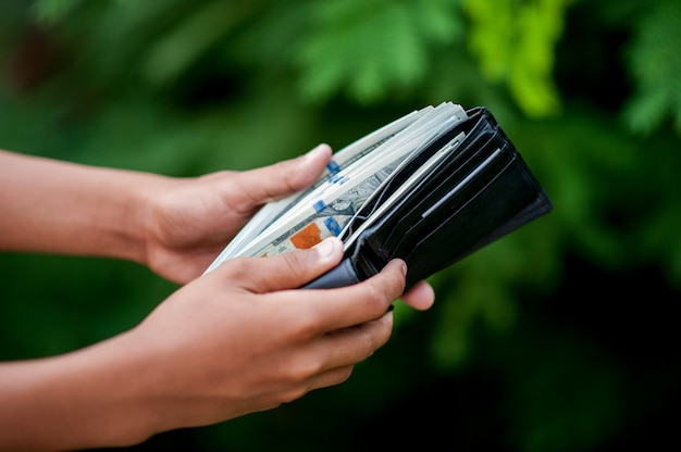 Dollar hand and purse images concept of business finance