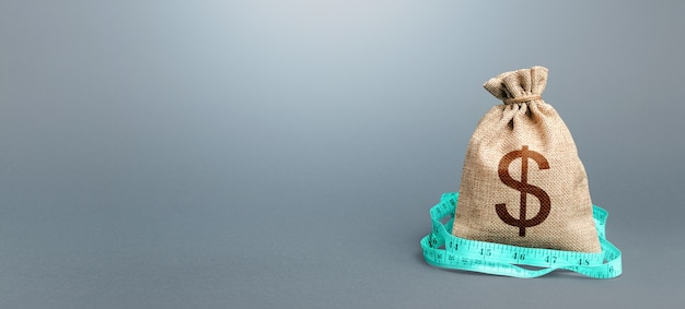 Dollar money bag and measuring tape meter