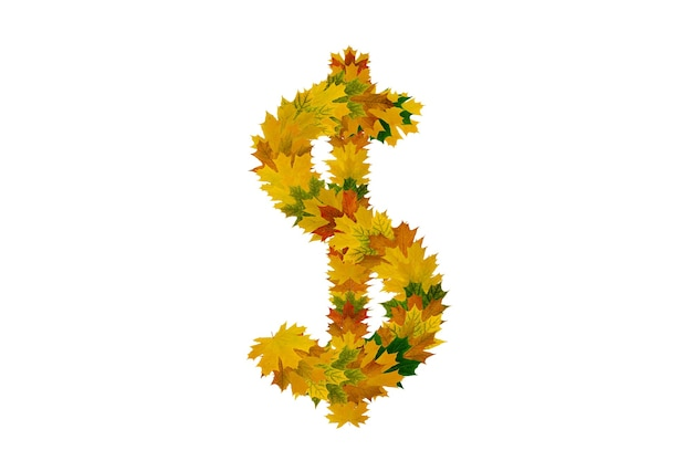 Dollar sign from green, yellow and orange autumn maple leaves isolated on white background.
