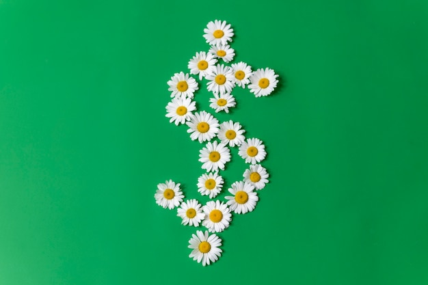Dollar symbol made of daisies on a green background