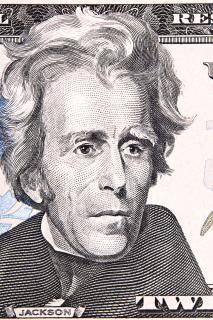 Dollar   wealth