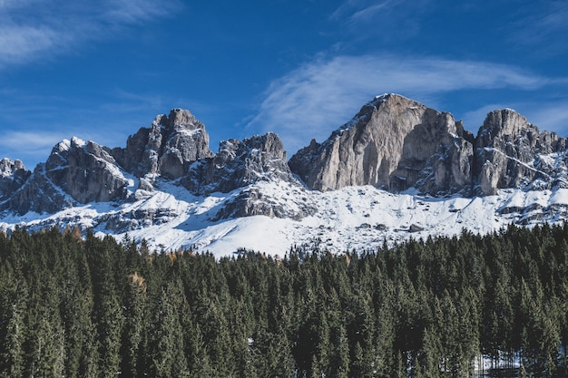 The dolomite peaks over the forest.