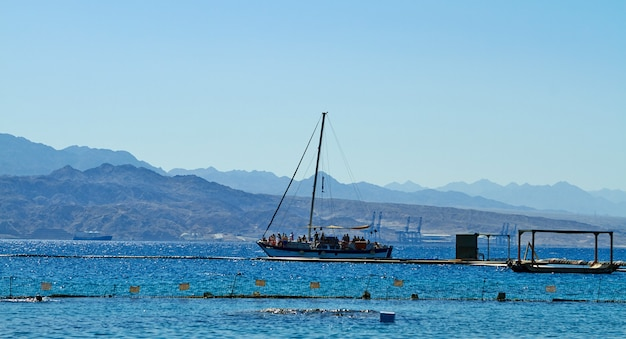 Dolphin reef on the red sea, pleasure boat