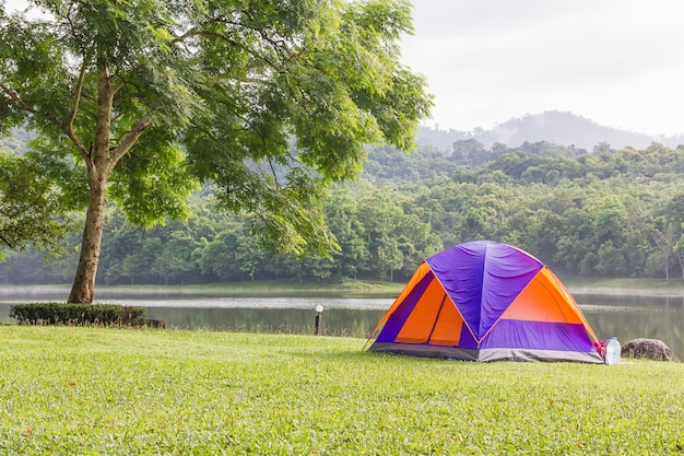 Dome tents camping in forest