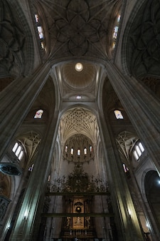Domes in the cathedral of segovia. spain.