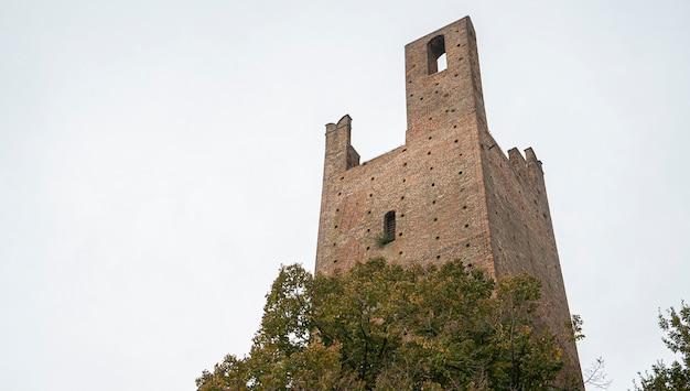 도나 타워와 그리말디 타워: 이탈리아 로비고에 있는 두 개의 고대 타워