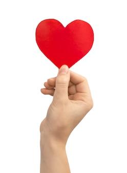 Концепция пожертвования. рука держит красное сердце, изолированные на белом фоне. копировать космическое фото