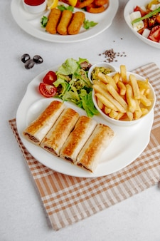 Doner wrapped in lavash with fries and fresh salad on plate